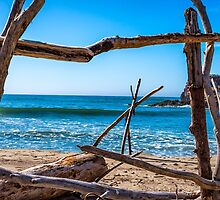 DRIFTWOOD FRAME by joseph s  giacalone