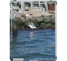 Beautiful Seagull  iPad Case/Skin