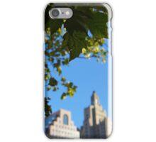 PVD: Nature Vs City iPhone Case/Skin