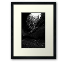 Double Helix Framed Print