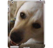 Handsome Lab iPad Case/Skin