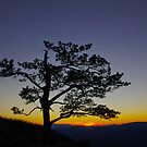 Blueridge beauty by Dave Parrish