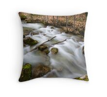 Creek in the forest at fall Throw Pillow