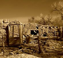 THE YEAR 2012~MY NEW MEXICO by Giamarie