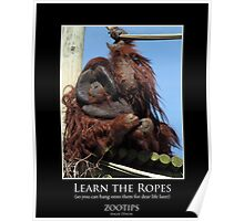 ZooTips: Learn the Ropes Poster