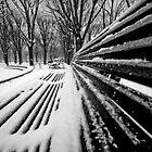 Bench by Laurent Hunziker
