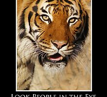 ZooTips: Look People in the Eye by Angie Dixon