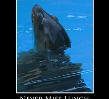 ZooTips: Never Miss Lunch by Angie Dixon