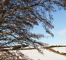 Winter Memories Derry Ireland by mikequigley