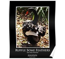 ZooTips: Ruffle Some Feathers Poster
