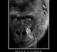ZooTips: Smile a Little by Angie Dixon