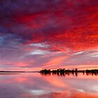 Red Morning by robcaddy