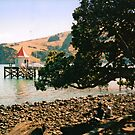 Relaxing in Akaroa by apple88