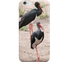 Awesome Black Stork iPhone Case/Skin