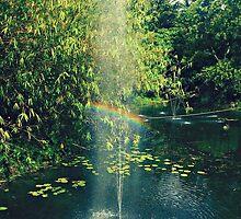 The Reflection Rainbow by Shaneguru