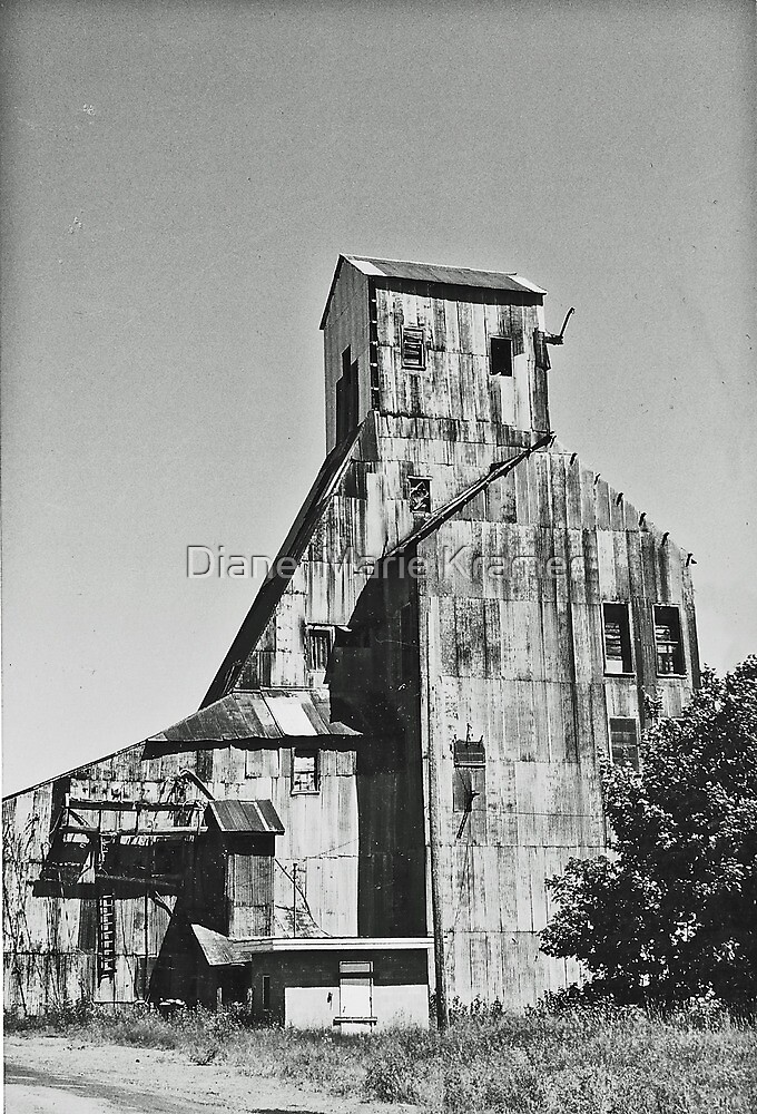 The Old Mill by Diane  Kramer