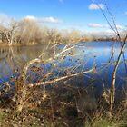 Duff  Pond... by trueblvr