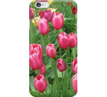 Spring Time Floral Tulips Galore photograph iPhone Case/Skin