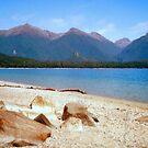 New Zealand Lake by apple88