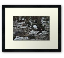 Your Boring Me Now Framed Print