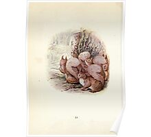 The Tale of Squirrel Nutkin Beatrix Potter 1903 0054 Nutkin in Old Brown Owl's Pocket Poster