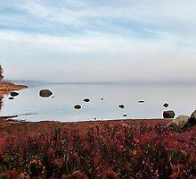 Fall -- Kezar Pond by T.J. Martin