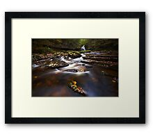 On An Island Framed Print