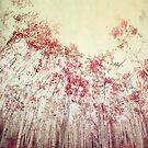 The Red Forest by Priska Wettstein