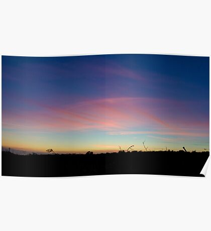 Pink clouds in the sky  Poster