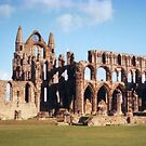 Whitby Abbey a different perspective by apple88