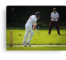 Jordan cricket 1 2010 Canvas Print