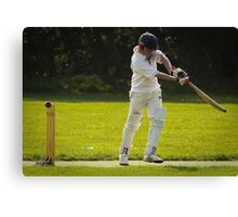 Jordan cricket 2 2010 Canvas Print