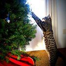 Kitty Decorating Her Tree by AngieBanta