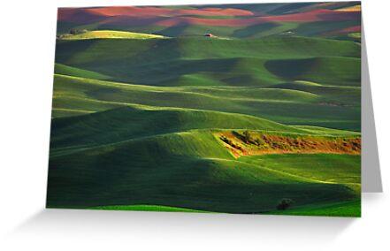 Sunset on the Palouse by Steve Biederman