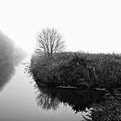 Foggy Fens by Ray Clarke