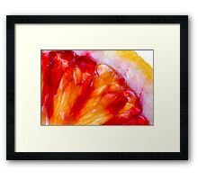 Blood in the veins Framed Print