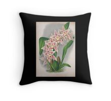 Iconagraphy of Orchids Iconographie des Orchidées Jean Jules Linden V4 1888 0142 Throw Pillow