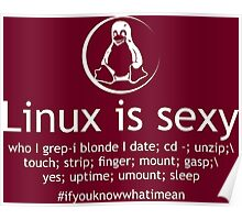 Linux Is Sexy Poster
