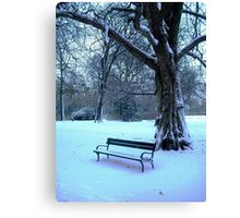 Too cold to sit & enjoy the scenery today! Canvas Print