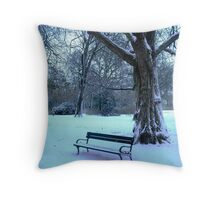 Too cold to sit & enjoy the scenery today! Throw Pillow