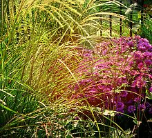 Autumn Garden Vingette by enchantedImages
