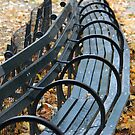 Park Bench by CMCetra