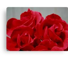 Red Roses Three Canvas Print