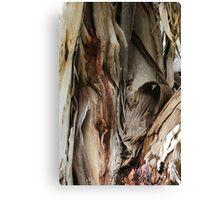 Bark Texture Canvas Print