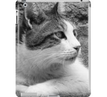 cat02 b/n iPad Case/Skin
