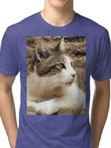 cat02 sepia Tri-blend T-Shirt