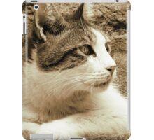cat02 sepia iPad Case/Skin