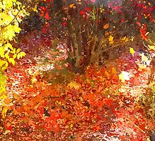 Nature's Potpourri by ChrisR