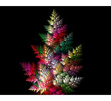 SPACE CHRISTMAS TREE  Photographic Print