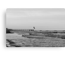 Carried by the Wind BW Canvas Print